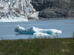 Gletsjerijs, Alaska