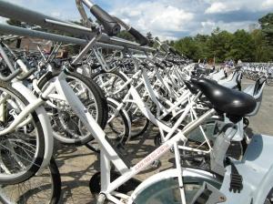De witte fietsen van De Hoge Veluwe