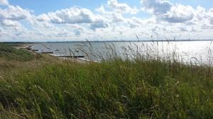 De duinen van Denemarken