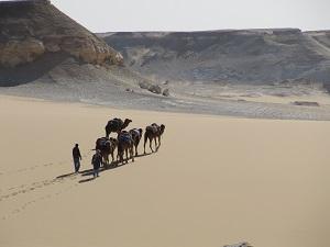 Daar gaan ze, onze trouwe dames, uitrusten van deze indrukwekkende reis.